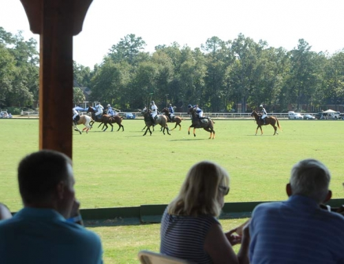 We're Getting Ready for Spring Polo!