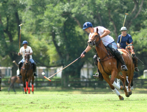 Aiken Polo Club Fall Season Membership, 2018