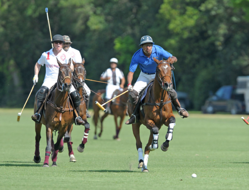 USPA Polo Museum Cup Schedule