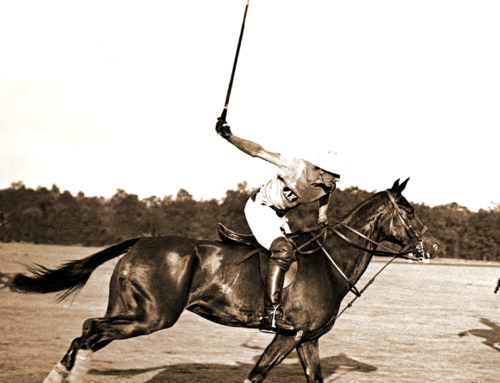 Aiken Polo Magazine