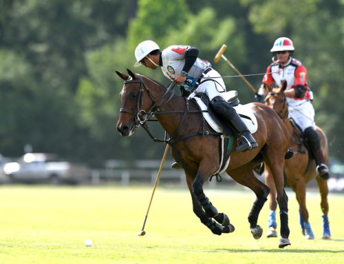 The USPA Constitution Schedule is out!