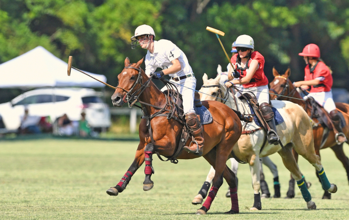 polo players NYTS