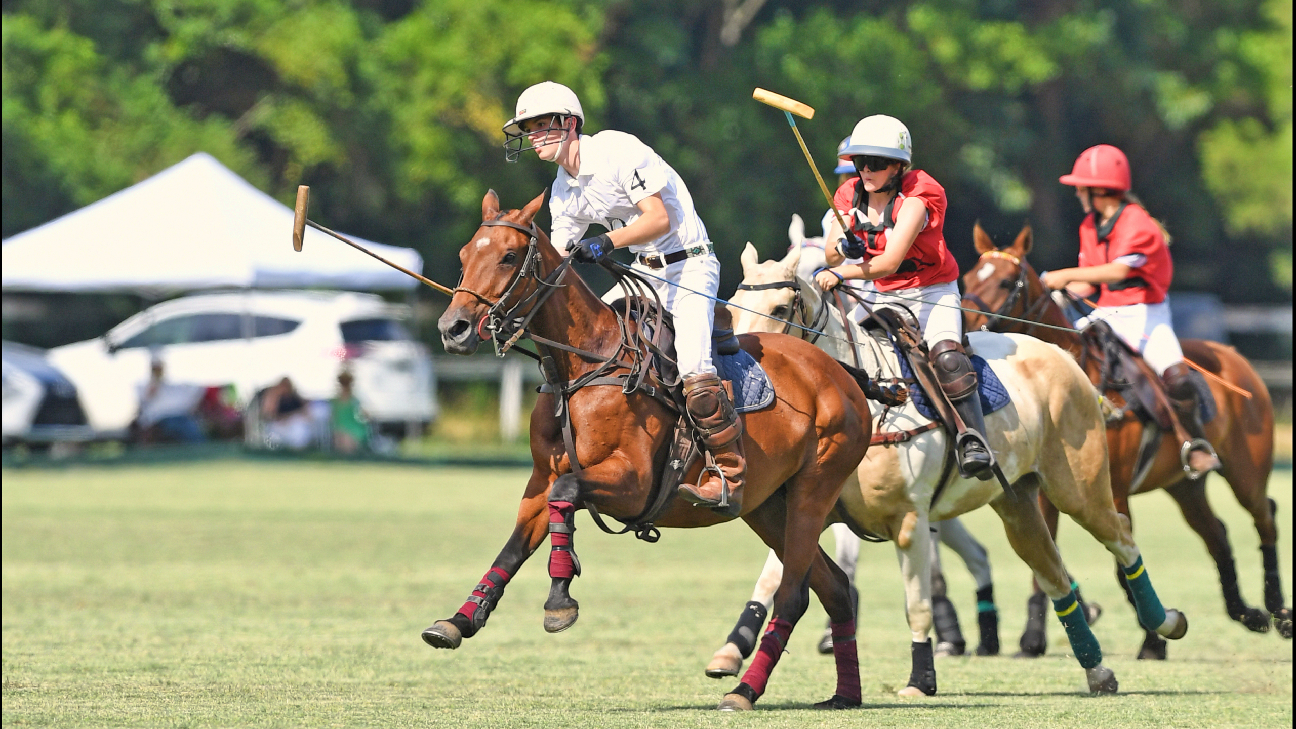 polo players NYTS
